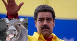 [VÍDEO] Detienen en Venezuela a dos bomberos que compararon a Maduro con un burro