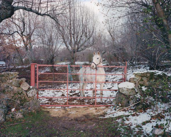Una de las obras de la serie 'Country Fictions' de Juan Aballe.