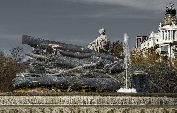 'Cibeles profanada', fotomontaje realizado por José Manuel Ballester con algunos de los árboles talados en el Paseo del Prado y la fuente de la Cibeles.