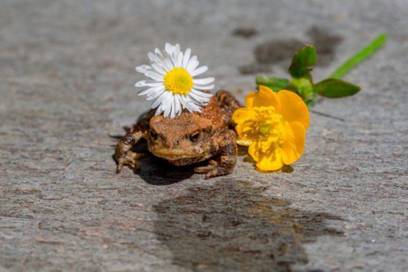 'Toda la felicidad de los seres vivos'. Foto: Ouka Lele