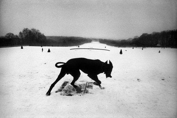 Francia. Hauts-de-Seine. Parc de Sceaux. 1987. Joseph Koudelka.