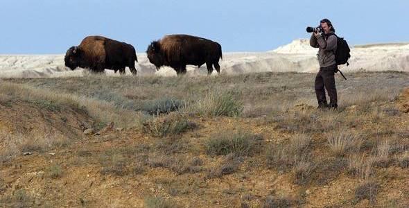 El padre de Unai, el fotógrafo Andoni Canela fotografiando bisontes en el documental 'El viaje de Unai'.
