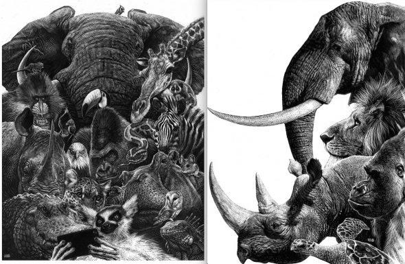 Animales. Ilustración: Ricardo.