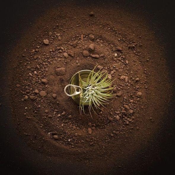 Segundo premio de este año: 'Re-Latado'. Foto de Gisela Aguilar.