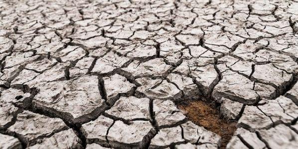 Efectos de la sequía en Alicante. Foto: Jesús Alenda / Flickr Creative Commons.