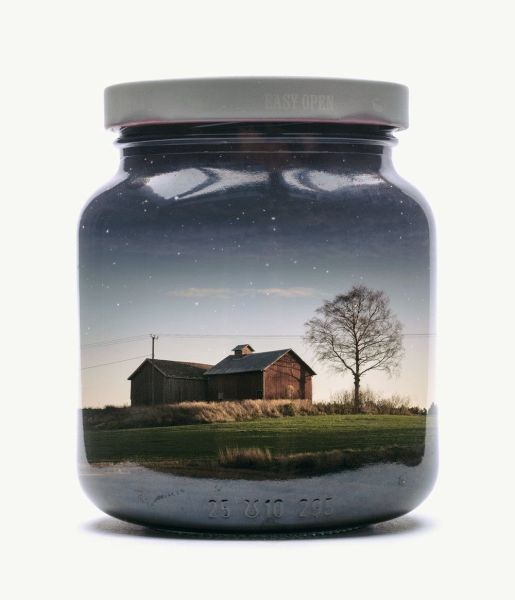 Morning barn. Foto: Christoffer Relander.