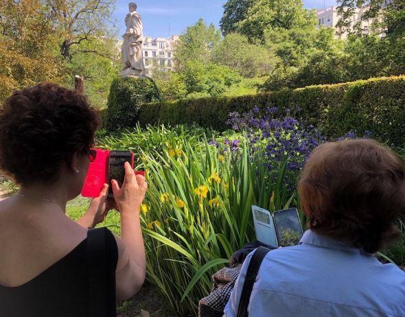 Fotografiando lirios en el Jardín Botánico. Foto: R. R.