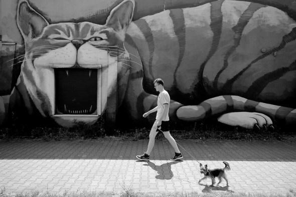 Foto: Piotr Mammnaimie. / Creative Commons.