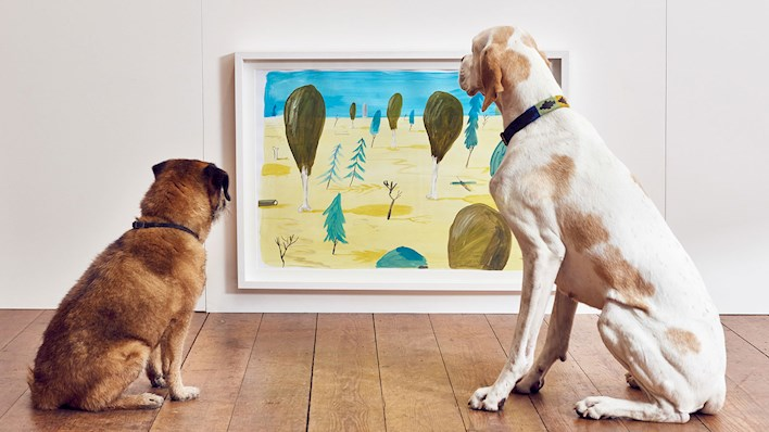 Arte contemporáneo para perros. Foto: Mikael Buck / More Than