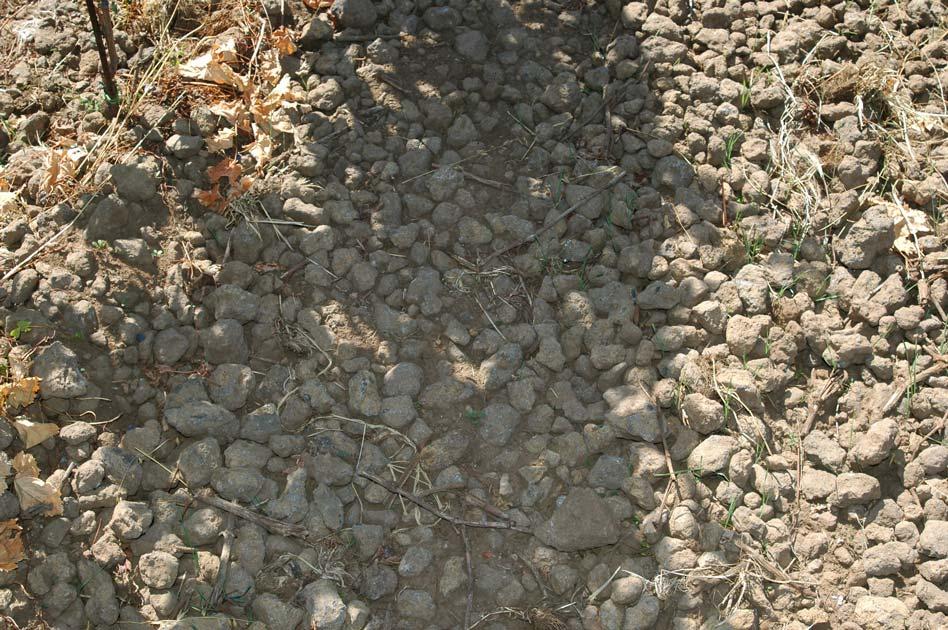 suelo de lava