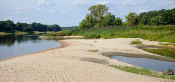 Elbe-Niedrigwasser-bei-Saalemuendung
