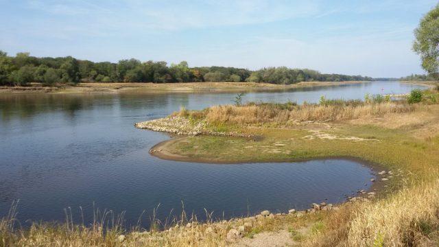 Elbe bei Steckby