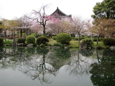 13 035 - Templo Toiji - Kyoto