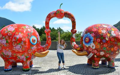 Arte al aire libre en Hakone
