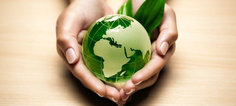 Responsabilidad de la Administración Pública en materia de Medio Ambiente
