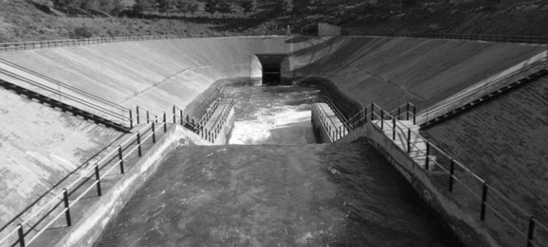 Indemnización al concesionario por el establecimiento de los caudales ecológicos fijados por la planificación hidrológica de cuenca