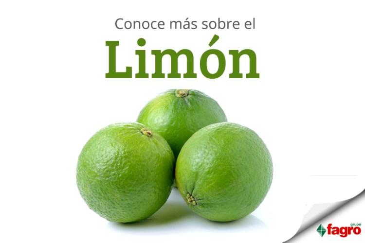 Conoce más sobre el Limón