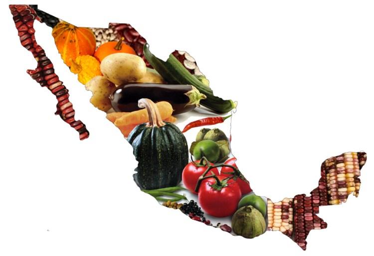 Mapa México agricultura