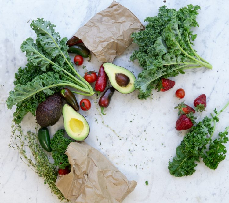 insumos para la agricultura orgánica