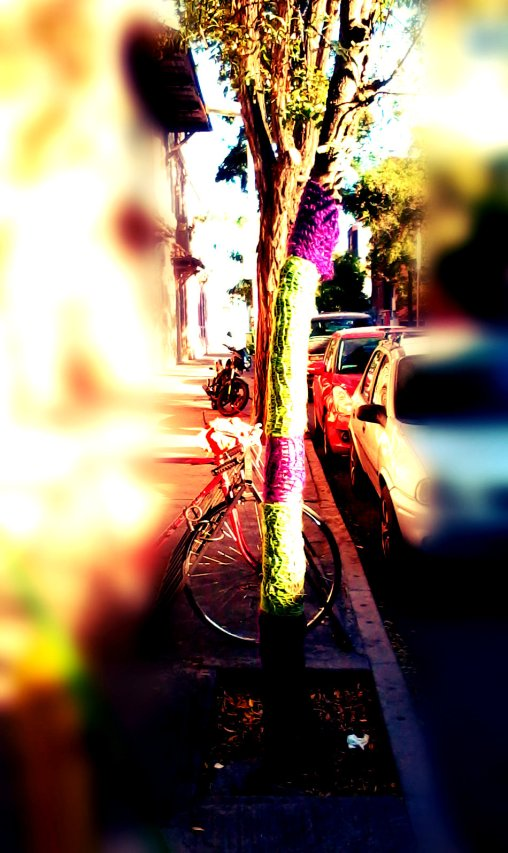 arbol foco_anne