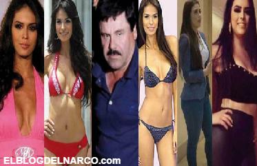 Conoce el catálogo de modelos en la vida de El Chapo.
