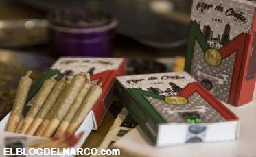 Crean la primer cajetilla mexicana con cigarros de mariguana que ya esta en circulación en México