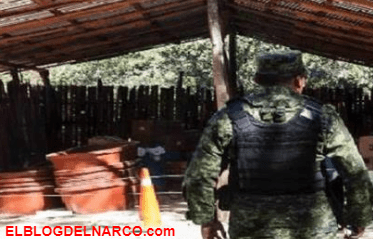 Ejército decomisa laboratorio y arsenal en Michoacán y Zacatecas