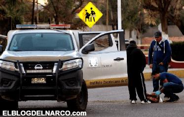 Operan en Zacatecas 5 cárteles