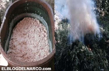 Revientan narco laboratorio en Baja California y 10 plantíos de marihuana en #Jalisco