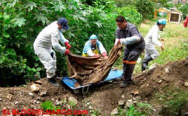 Dos cárteles podrían estar involucrados en narco-fosas de Veracruz