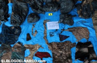 Encuentran campo de exterminio en Veracruz, encuentran 166 cuerpos enterrados en fosas clandestinas