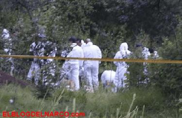 Encuentran narcocampamento destinado para torturar y sepultar victimas en Tamaulipas.
