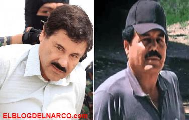 ¿Qué papel jugarán los Zambada en el juicio de El Chapo Guzmán... El capo fantasma, el delator y el narco junior arrepentido