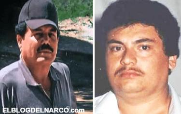 El Guano, el otro Guzmán Loera que desbancó al Mayo Zambada