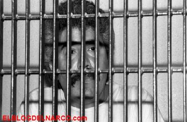 Afirman que Caro Quintero no está protegido como sí estuvo 'El Chapo'