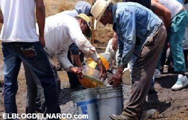 El Cártel Jalisco Nueva Generación y Los Zetas, los cárteles que más se benefician del huachicoleo...