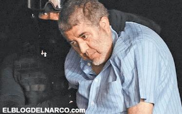 En sexenio de Peña Nieto deficiencias legales permitieron que líderes capturados del narco recuperaran su libertad