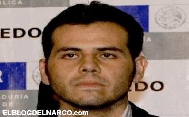 La recompensa del hijo del Mayo por traicionar al Chapo
