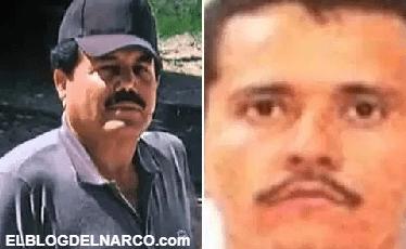 """¿Se intensifica guerra entre """"El Mayo"""" Zambada y """"El Mencho"""""""