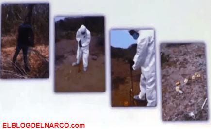 Encuentran 36 narcofosas clandestinas en un solo predio en Veracruz
