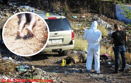 Estremecen imágenes de cadáveres regados en municipios de Guerrero