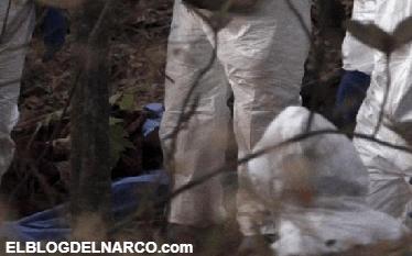 Encuentran cuatros cuerpos en una narcofosa en Xalisco, Nayarit