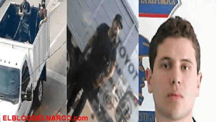 Por frecuencias confirman que fue abatido Iván Archivaldo Guzmán El Chapito; su otro hijo de El Chapo fue detenido