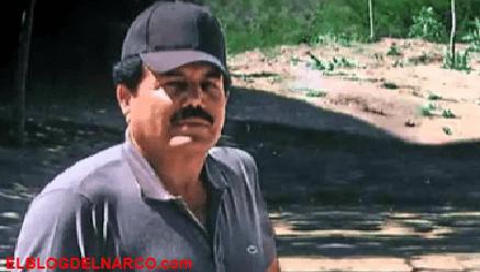 El Mayo Zambada es el verdadero Jefe de Jefes del narcotráfico y Cartel de Sinaloa
