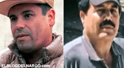 Habrá otro 'Chapo' pero nunca otro 'Mayo' Zambada, Anabel Hernández...