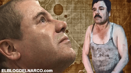 """El Chapo """"trabaja"""" desde su celda de máxima seguridad, en la apelación de su juicio..."""