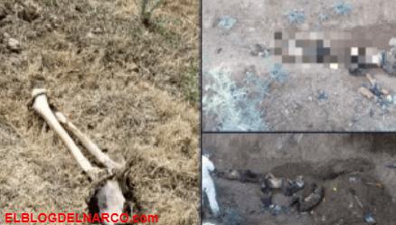 El aterrador narcocementerio en donde huachioleros y narcos se matan sin piedad (Fotos)