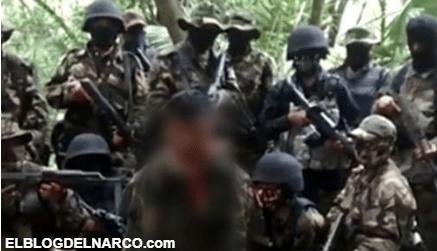 """Los Zetas, Los Pelones, FEA, cómo los brazos armados ayudaron a revivir """"cárteles muertos"""" .."""