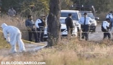 Hallan 6 cuerpos torturados y embolsados en una terracería de Zacatecas