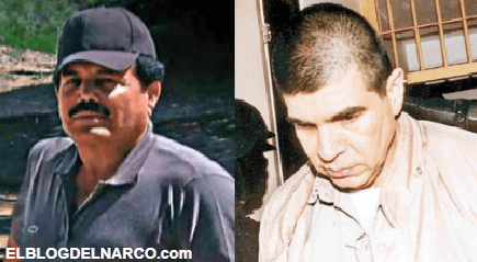 La brutal venganza de El Mayo Zambada contra los Arellano Félix